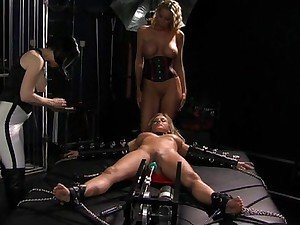 Hot whore Bree Olson gets tied and gets her pussy tooled