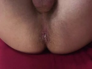 Breeding And Creampies